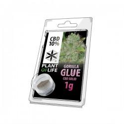 Solid CBD 10% Gorilla Glue 1GR