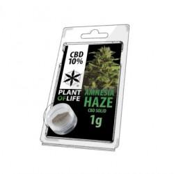 Solid CBD 10% Amnesia Haze 1GR