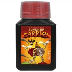 TOP CROP - BARRIER